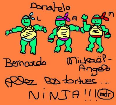 Tortue ninja dpeui ltem ke jdevai en fair un mdr - Le nom des tortue ninja ...